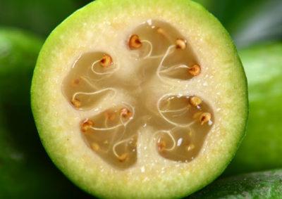 フェイジョアの果実の断面